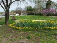 Sundial garden 1